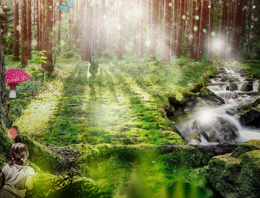 Gladaskogen utan älvan_TOM